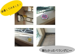 2017131182637.jpg